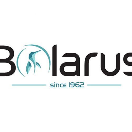 Bolarus, Bochnia